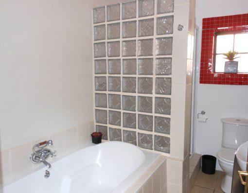 Cycad-bathroom-house-on-york-accommodation