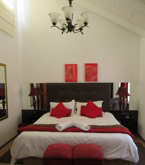 Cycad-room-NEW-house-on-york-accommodation