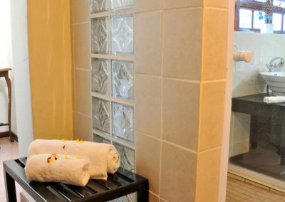 Protea-Shower-2-bed-breakfast-accommodation-house-on-york